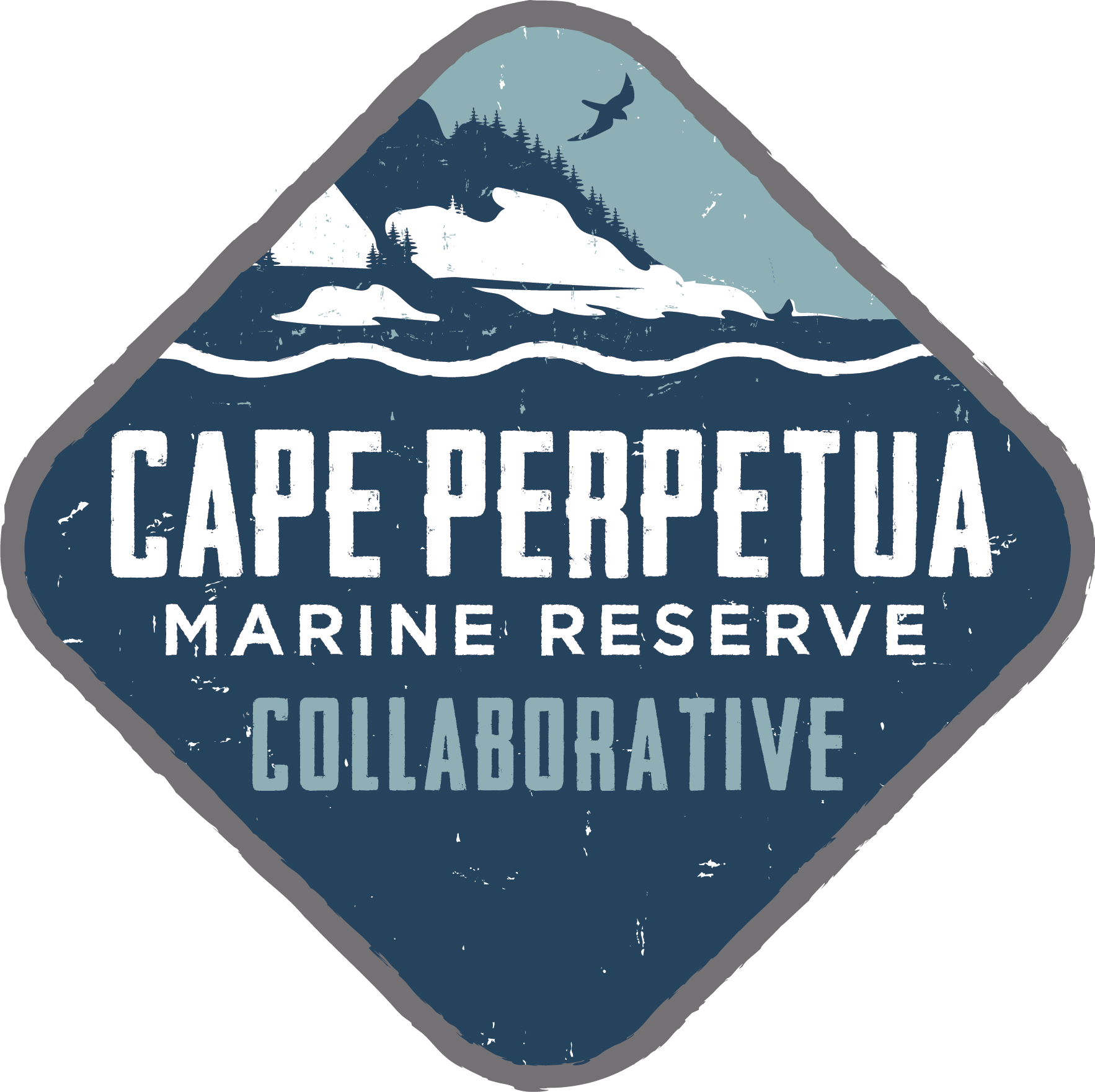 Cape Perpetua Collaborative