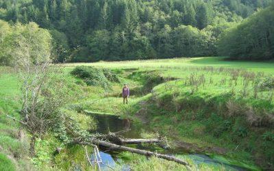 Fivemile-Bell Landscape Restoration Project