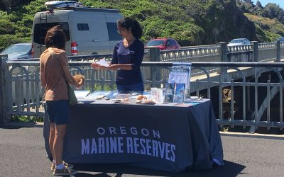 Call for Volunteers: Cape Perpetua Marine Reserve Ambassador Program