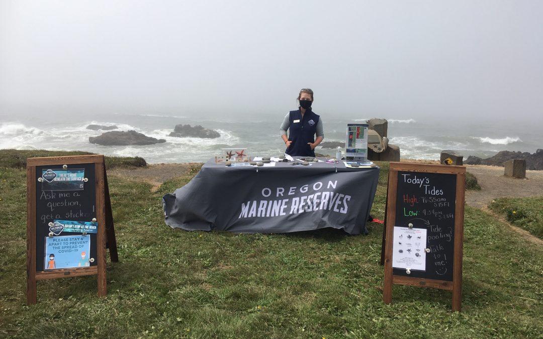 Marine Reserve Ambassador Program Provided Avenue for Environmental Preservation and Appreciation