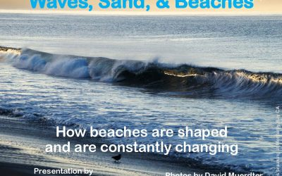 Webinar REPLAY:  Waves, Sand, and Beaches: The Constantly Changing Shoreline