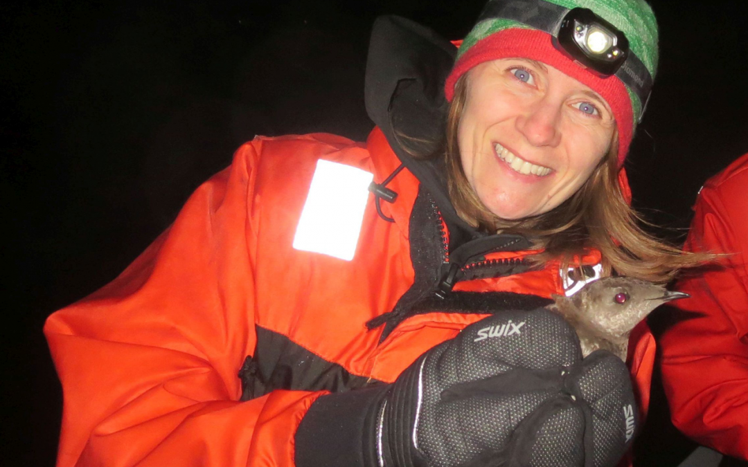 Webinar REPLAY:  Under the Cover of Darkness: Tracking Oregon's Marbled Murrelets